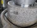 肠粉磨浆机图片